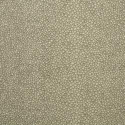 Roseus Regatta | Light Sage | Faux leather | Anzea Textiles