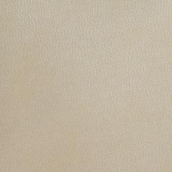 Silicon Mountain   Crystalline   Tessuti imbottiti   Anzea Textiles