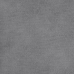 Silicon Mountain | Rayleigh | Fabrics | Anzea Textiles
