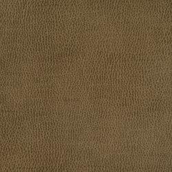 Silicon Mountain | Beta | Tessuti | Anzea Textiles