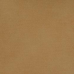 Silicon Mountain | Siderite | Tessuti | Anzea Textiles