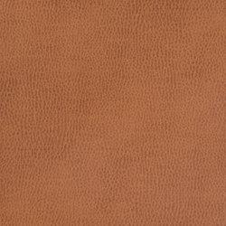 Silicon Mountain | Mahogany | Tissus | Anzea Textiles