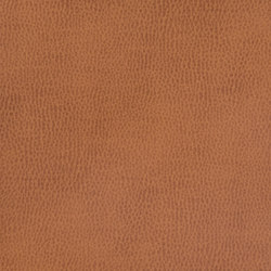 Silicon Mountain | Mahogany | Fabrics | Anzea Textiles