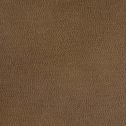 Silicon Mountain   Morion   Fabrics   Anzea Textiles