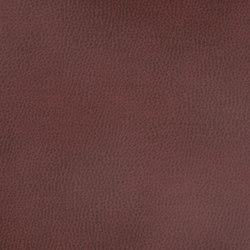 Silicon Mountain | Jasper | Fabrics | Anzea Textiles
