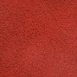 Silicon Mountain | Ruby Aura | Tejidos tapicerías | Anzea Textiles