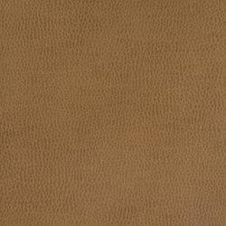 Silicon Mountain | Terra | Fabrics | Anzea Textiles