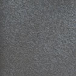 Silicon Mountain | Onyx | Tessuti | Anzea Textiles
