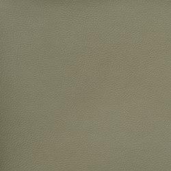 Silicon Slopes   Lichen   Fabrics   Anzea Textiles