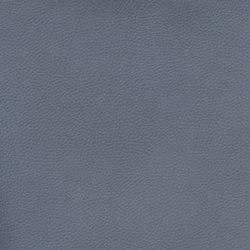 Silicon Slopes | Harbor | Fabrics | Anzea Textiles