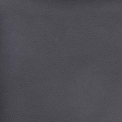 Silicon Slopes | Indigo | Fabrics | Anzea Textiles