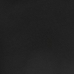 Silicon Slopes | Black | Fabrics | Anzea Textiles