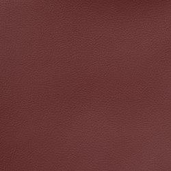 Silicon Slopes | Cordovan | Fabrics | Anzea Textiles
