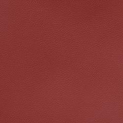 Silicon Slopes | Fierce | Stoffbezüge | Anzea Textiles