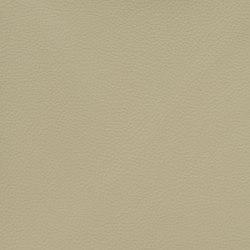 Silicon Slopes | Canvas | Fabrics | Anzea Textiles