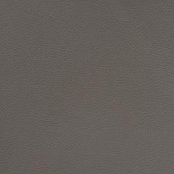 Silicon Slopes | Graphite | Tissus | Anzea Textiles