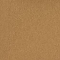 Silicon Slopes | Butterscotch | Tessuti | Anzea Textiles