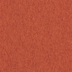 Carpets / Rugs | Floor