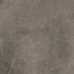 Marstood | Marble 03 | Fior Di Bosco | 60x60 matt | Ceramic tiles | TERRATINTA GROUP