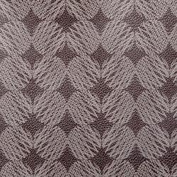 Tumbleweed | Dark Desert | Fabrics | Anzea Textiles