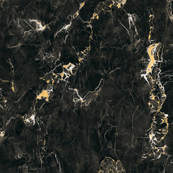 Black Gold JW 11 | Ceramic tiles | Mirage