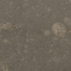 Atlantic Grey | Planchas de piedra natural | LEVANTINA