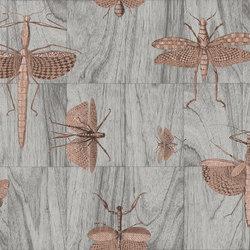 Ligna Wings | Wandbeläge / Tapeten | Arte