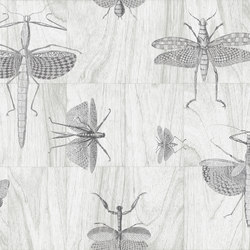 Ligna Wings | Wall coverings / wallpapers | Arte