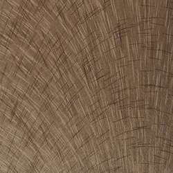 Carina   Kangaroo   Wall coverings / wallpapers   Luxe Surfaces