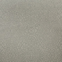 Nashira lace NAI3803 | Tessuti decorative | Omexco