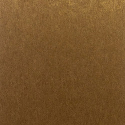 Palazzo burnished metal PAL4956 | Wall coverings / wallpapers | Omexco