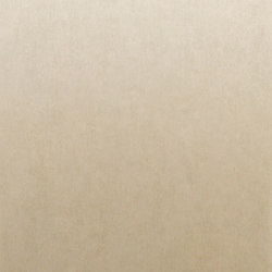 Palazzo venetian plaster PAL2640 | Drapery fabrics | Omexco