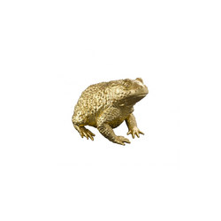 Golden Toad Talisman | Diverso | Fisher Weisman