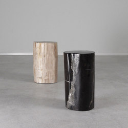 Genuine Petrified Wood Log Table | Beistelltische | Pfeifer Studio