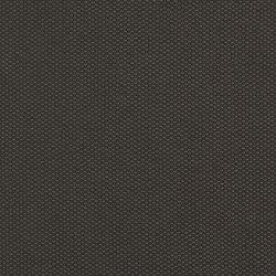 India | Surat | Tessuti per pareti | Luum Fabrics