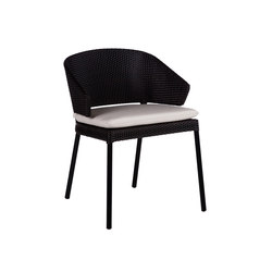 Fennec Sillon Comedor | Sillas | Point