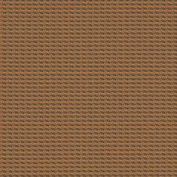 Cross Dye | Carotene | Tejidos murales | Luum Fabrics