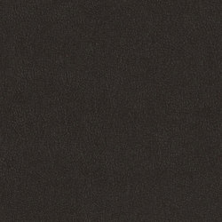 Ultra Durable | Black Velvet | Fabrics | Luum Fabrics