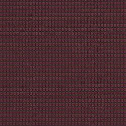 Two Tone | English Rose | Fabrics | Luum Fabrics