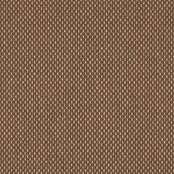 Magnify | Bright Eyes | Fabrics | Luum Fabrics