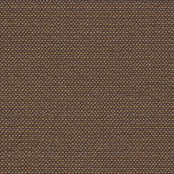 Iterate | Cite | Tejidos tapicerías | Luum Fabrics