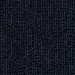 Ample | Cosmic | Upholstery fabrics | Luum Fabrics