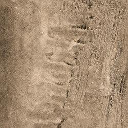 La Fabbrica -Wild - Tiger | Floor tiles | La Fabbrica