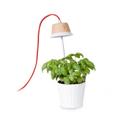 Chlorophyll | Lampade a sospensione LED | Linea Light Group