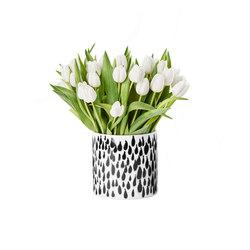 Deko Vases | Rain | Vasen | Design House Stockholm