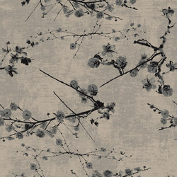 Rawline Scala Velvet Bloom rf52952541 | Wall-to-wall carpets | ege