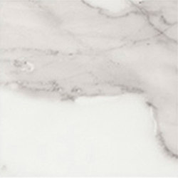 Marstood | Marble 01 | Statuario | 15x15 matt | Piastrelle ceramica | TERRATINTA GROUP