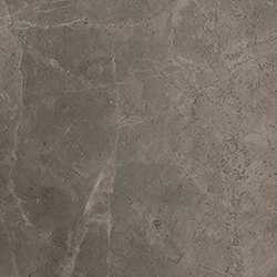 Marstood | Marble 03 | Fior Di Bosco | 30x30 matt | Ceramic tiles | TERRATINTA GROUP