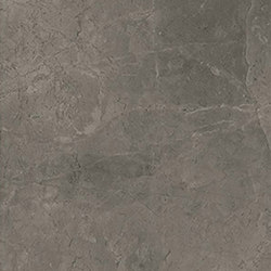 Marstood | Marble 03 | Fior Di Bosco | 30x60 matt | Ceramic tiles | TERRATINTA GROUP