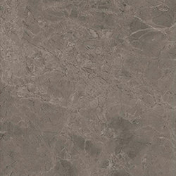 Marstood | Marble 03 | Fior Di Bosco | 30x60 polished | Floor tiles | Ceramica Magica